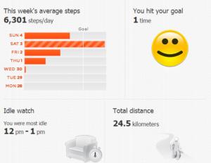 Walk Activity Statistics